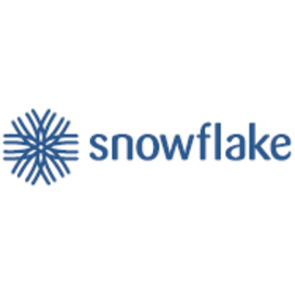 Big snowflake