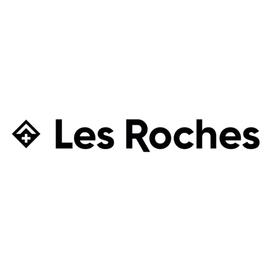 Big logo les%2broches