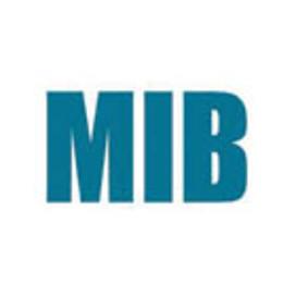 Big mib